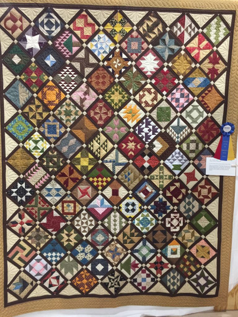 Farmer's Wife pieced by by Donna Chaves President's Award Quilters by the Sea Show April 2017